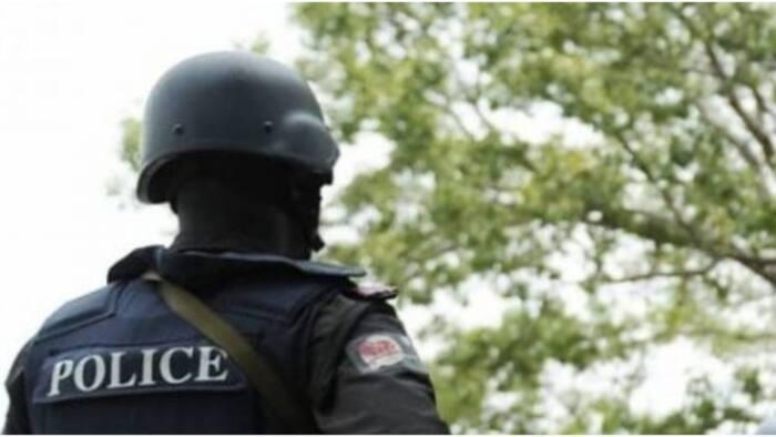 Nigeria Police News Today | Nigeria Police Rumors and