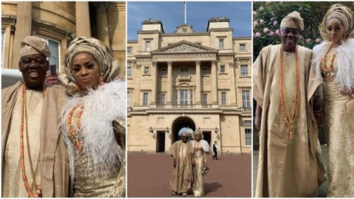 Image result for Queen Of England Hosts Billionaire Razaq Okoya, Wife At Buckingham Palace (photos)