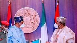 Twitter ban: I am not happy that I cannot tweet - Buhari's aide opens up