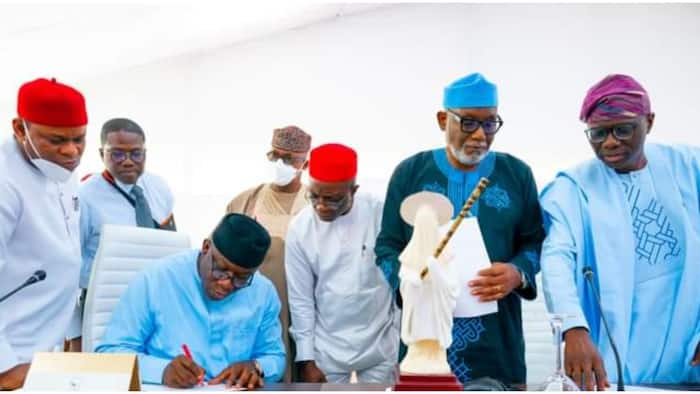 Anti-open grazing law: Trouble for southern govs as FG backs herders' planned move to file lawsuit