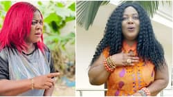 Don't come out of your own marriage to go and scatter other people's peaceful homes, Uche Ebere tells women