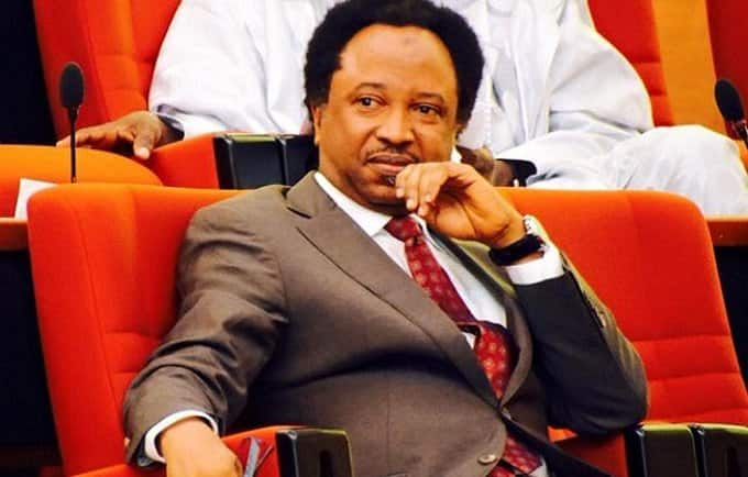 Shehu Sani knocks health ministry over planned replacement of doctors with corpers