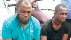 Woman-led robbers strip driver of car, money and other possessions (photo)