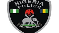 Nigeria Police recruitment portal: how to check if you have been shortlisted