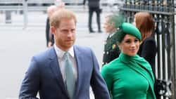 Prince Harry, Meghan Markle May Choose American Godparents for Baby Lilibet, Oprah Winfrey Speculated