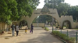 Jubilation as northern university offers students N10m scholarship to study in China