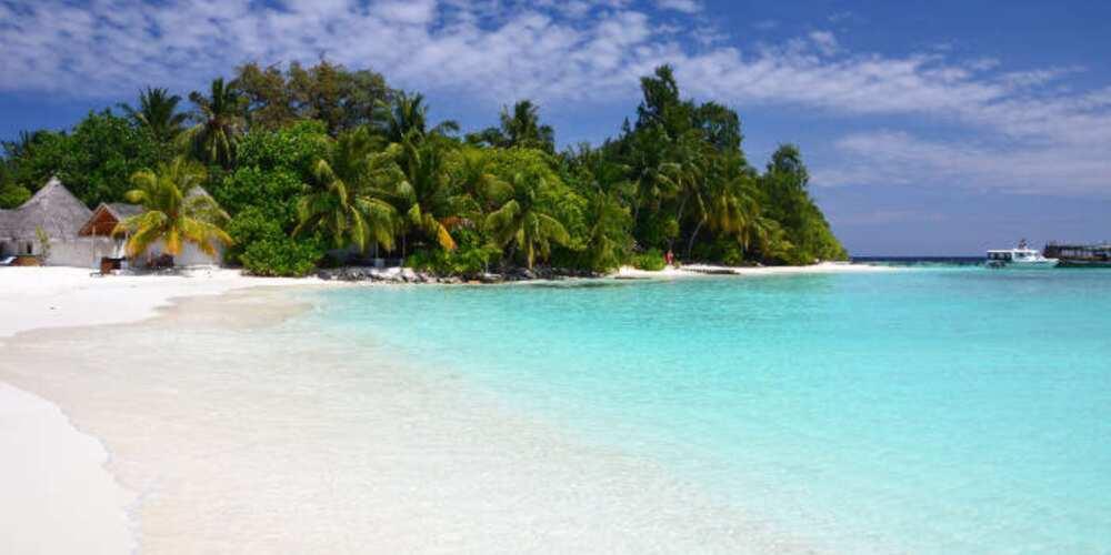 Thoddoo Island is a beautiful island in the Maldives