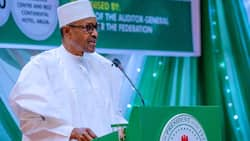 BREAKING: Amid outrage, reactions, FG gives crucial update on petrol price