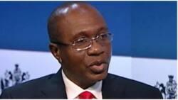 Godwin Emefiele, CBN and the Delayed Launch of eNaira by Onyema Dike