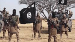 Da Duminsa: Boko Haram ta sako Alooma da wasu mutum 9 da ta sace watanni 5 da suka gabata
