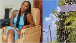 Amid leaked intimate tape drama Tiwa Savage gets street in Lagos named after her, Annie Idibia reacts