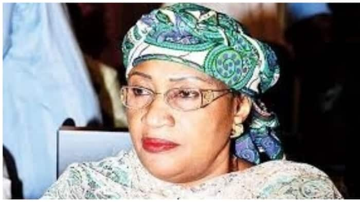 Maybe it's not my destiny to become governor - Buhari's ex minister laments