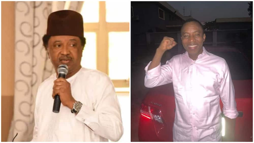 Shehu Sani reacts to arrest of Sowore