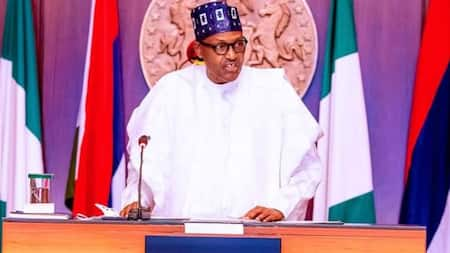 2023: Why presidency should be zoned to the South, Afenifere backs governors, gives crucial details