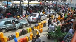 Nigerians will not experience fuel scarcity during Christmas - Reps