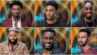 BBNaija 2021 Live Updates: Male housemates come out in style as season 6 of reality show kicks off