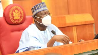 Uncertainty in NASS over move to impeach Senate President Ahmad Lawan