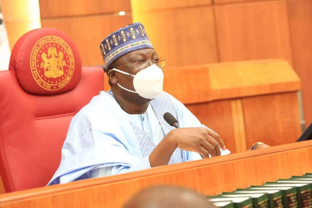 Nigerians protest as Senate moves to create database for cows in the country