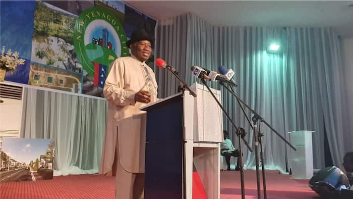 Goodluck Jonathan: Ex-Nigerian president bags juicy international appointment
