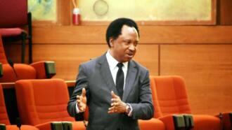 Shehu Sani speaks on Buhari's attendance of OIC summit