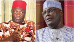 It's not politically correct - Group lauds Ohanaeze for denying endorsing Atiku