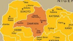 Panic as bandits invade Zamfara again, set house of speaker, others ablaze