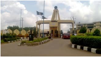 Ibadan Poly goes tough against exam malpractice; burns phones worth millions of naira seized from students