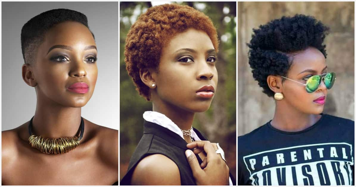 Very short natural hairstyles for real fashionistas ▷ Legit.ng