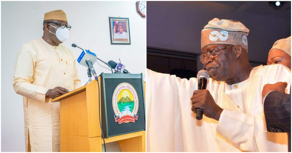 2023 presidency: Why we want Tinubu not Fayemi as president, APC chieftain speaks