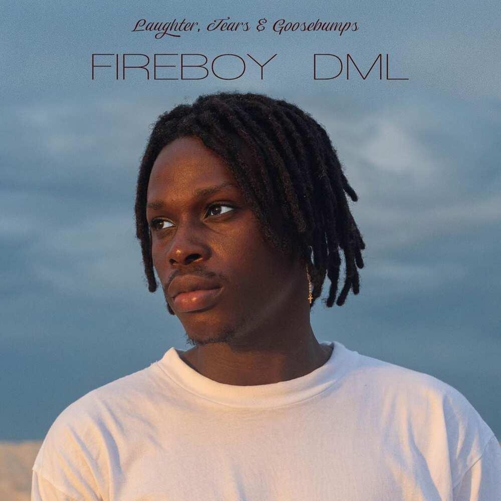 Fireboy album