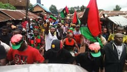 Breaking: Tension as 5 IPOB militants are allegedly gunned down in southeast