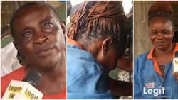 Elderly couple whose love journey stemmed from being mechanics warm hearts in cute video, Nigerians are wowed