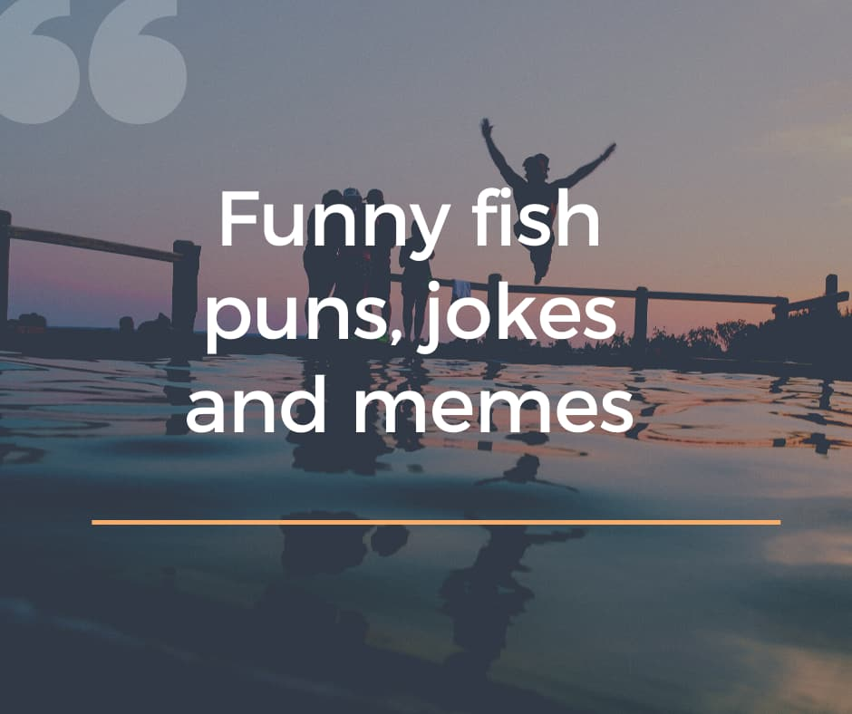 50 Funny Fish Puns Jokes And Memes You Just Have To See Legit Ng