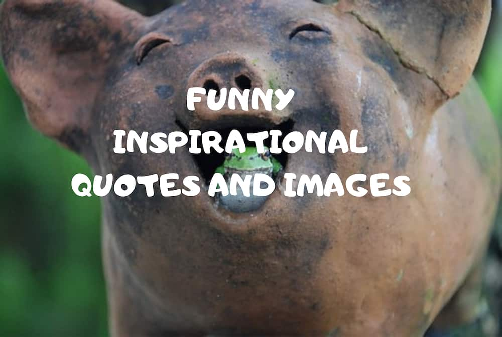 35 funny inspirational quotes and messages for everyday ...
