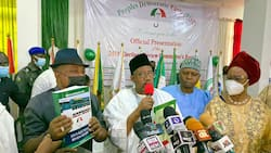 We have evidence that PDP won 2019 presidential election - Northern governor