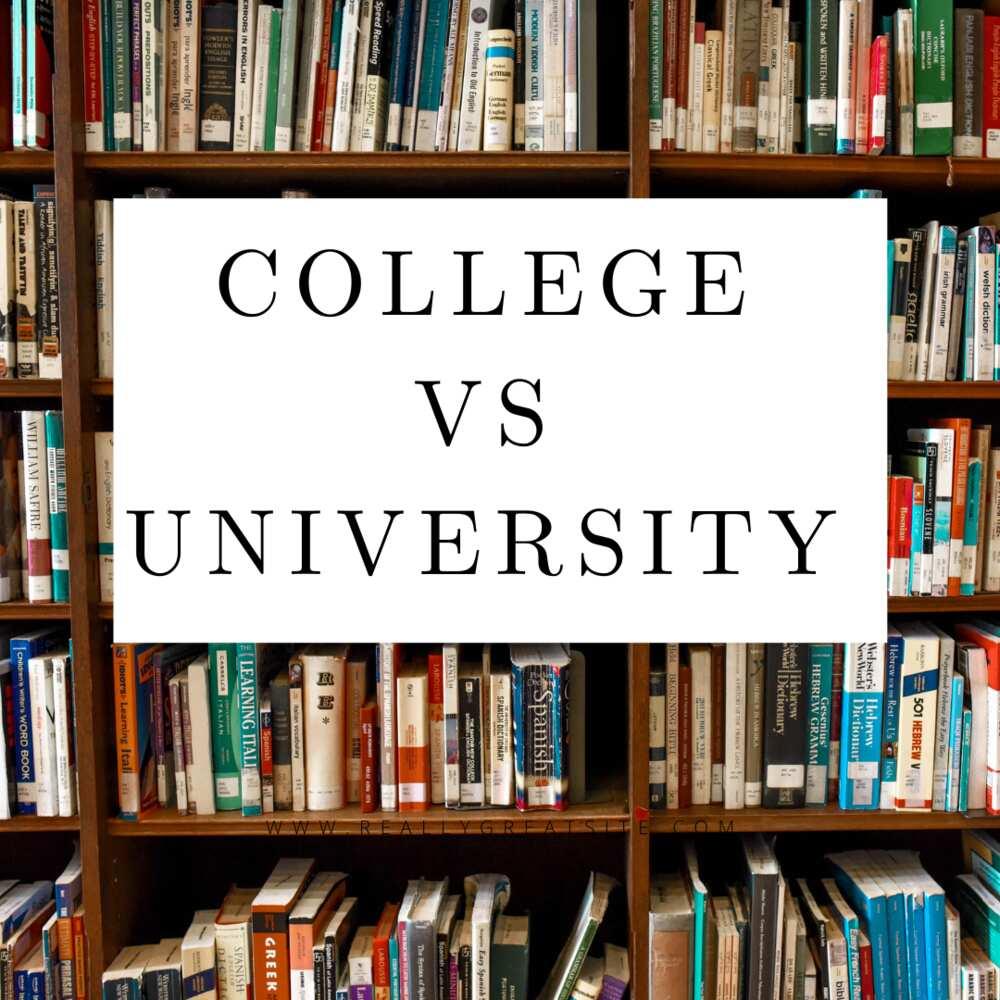 College vs university