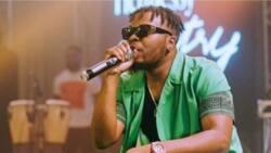 Nigerians promise to boycott Olamide's OLIC over new song Logo Benz allegedly glorifying blood money