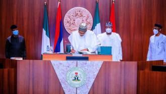 Analysing Nigeria's dangerous road to infectious disease legislations