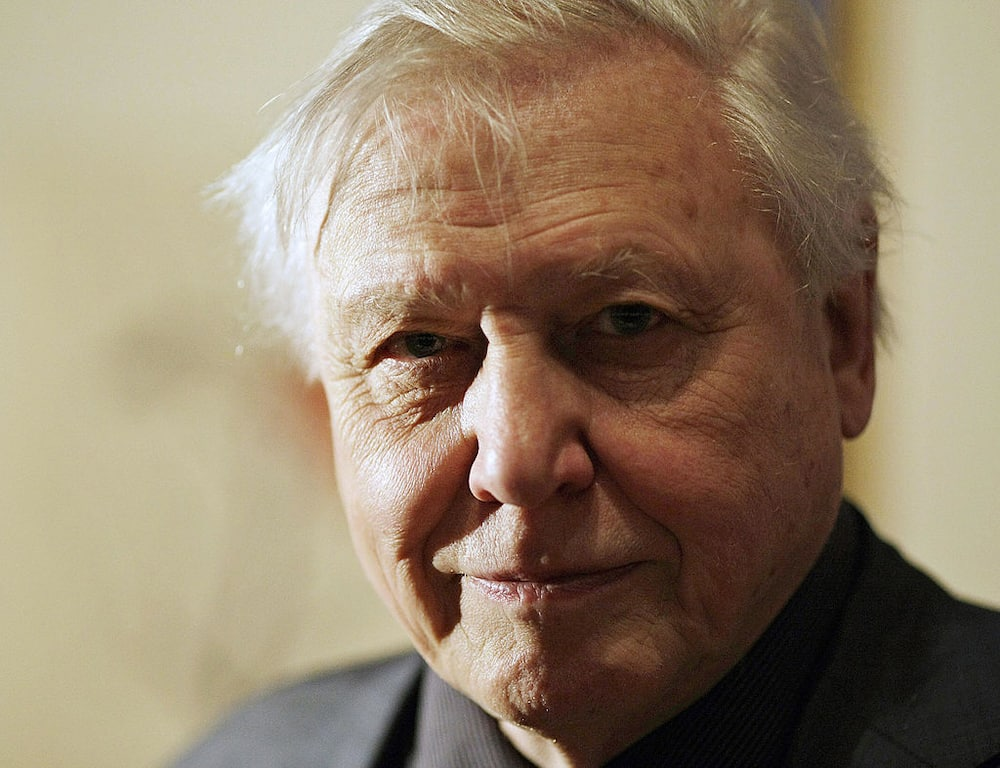 Is David Attenborough married