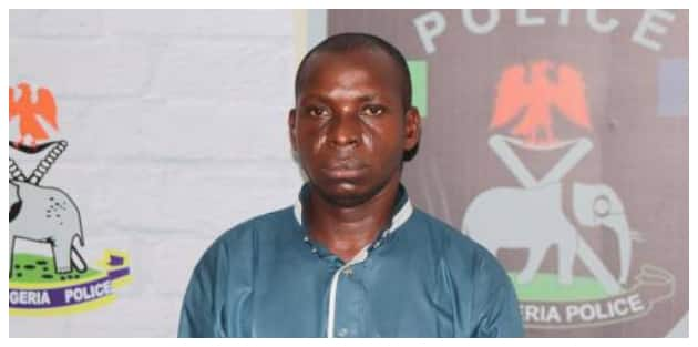Image result for Video: Wadume's arrest to bring answers to policemen killing in Taraba, says IGP