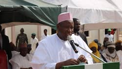 Kano state govt abolishes almajiri system, begins enrollment of kids into conventional schools