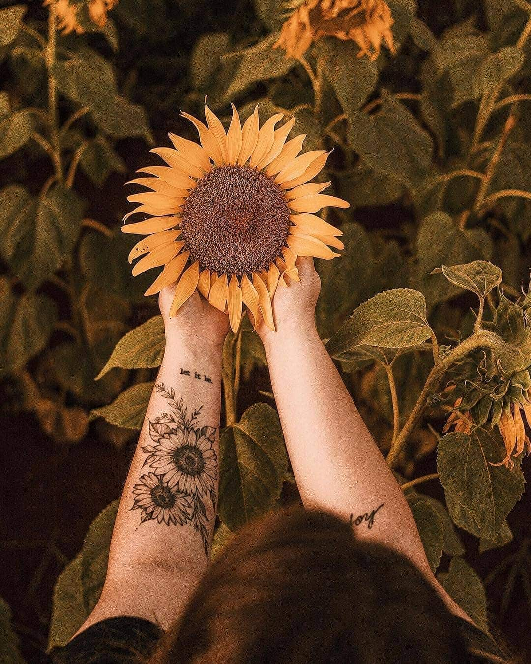 Sunflower Tattoo Meaning And Top 50 Designs Legit Ng