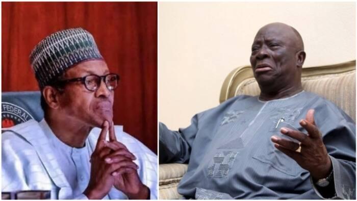 'Muna rokon Ubangijinmu ya yi mana maganin Buhari' - Ayo Adebanjo kan kamun Igboho