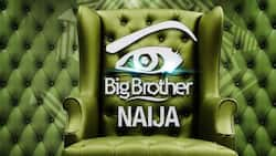 Big Brother Naija to hold after 2019 elections and inaugurations - Source reveals
