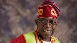 List of top groups openly backing Tinubu presidency in 2023