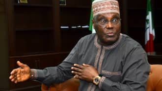 Breaking: You have questions to answer over collapse of Bank PHB - FG tells Atiku
