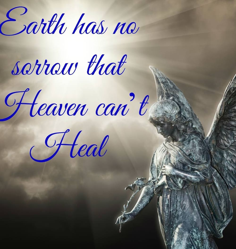 Quotes about angels on earth