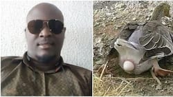 Women make unnecessary noise in the labour room like it's by force to give birth - Nigerian man