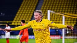 Chelsea to offer Borussia Dortmund £60m plus top star in exchange for Haaland this summer