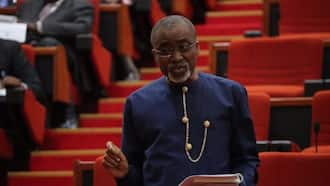 Nnamdi Kanu: Abaribe should be in prison, deputy speaker declares